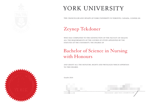 Zeynep Tekdoner's university degree in nursing