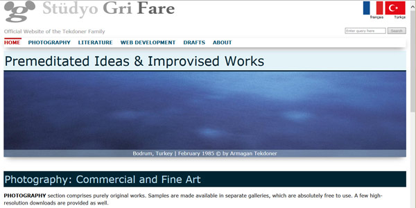 Screenshot of grifare website in January 2016